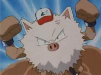 Colossinge de sacha pok p dia - Pokemon ferosinge ...