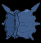 Sprite 091 chromatique dos XY.png