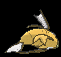 Sprite 129 ♂ chromatique dos XY.png