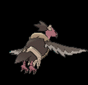 Sprite 630 dos XY.png