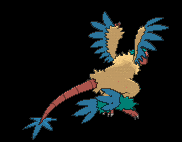 Sprite 567 dos XY.png