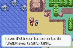 pokemon x comment avoir la super canne