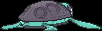 Sprite 564 chromatique dos XY.png