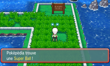 Route 110 Super Ball ROSA.png