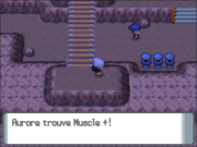 Route 207 Muscle + DP.png