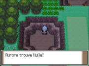 Route 209 Huile PT.png