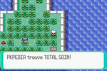 Route 110 Total Soin RSE.png