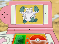 DP126 - Blizzaroi Pokédex.png