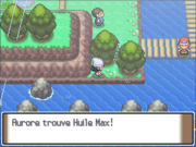 Route 212 Huile Max PT.png