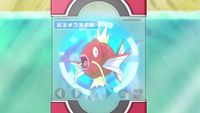 XY022 - Magicarpe Pokédex.png