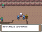 Route 207 Super Potion PT.png