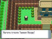 Route 213 Tesson Rouge DP.png