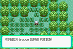 Route 104 Super Potion RSE.png