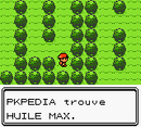 Route 2 Huile Max C.png