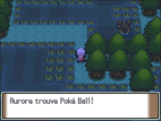 Grand Marais Poké Ball 2 PT.png