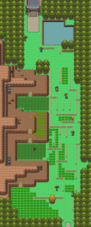 Route 214.png