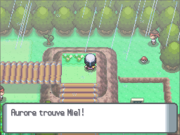Route 215 Miel DP.png