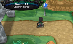 Route 11 XY.png