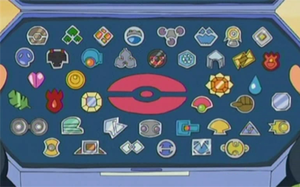 Badge pok p dia - Pokemon 6eme generation ...