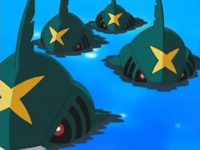 Sharpedo des assistants de J.png