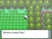 Route 215 Zinc DP.png