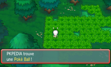 Route 104 Poké Ball ROSA.png