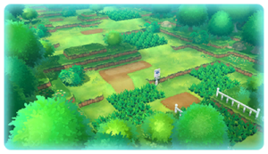 Route 1 (Kanto) LGPE.png