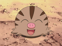 Marcacrin pok p dia - Cochon pokemon ...