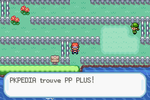 Route 13 PP Plus RFVF.png