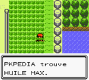 Route 17 Huile Max 1 C.png