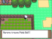 Route 207 Poké Ball PT.png