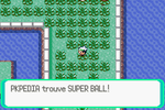 Route 110 Super Ball RSE.PNG