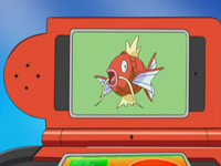 DP021 - Magicarpe Pokédex.png
