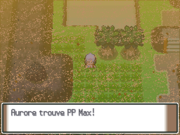Route 228 PP Max PT.png