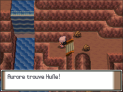 Route 208 Huile PT.png
