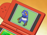 DP008 - Cradopaud Pokédex.png