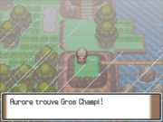 Route 212 Gros Champi PT.png