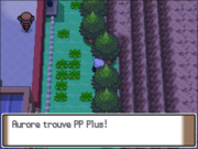 Route 206 PP Plus PT.png