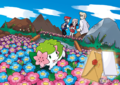 Artwork distribution Lettre Chen - Shaymin.png