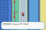 Route 17 PP Plus RFVF.png