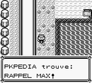 Route 17 Rappel Max RB.png