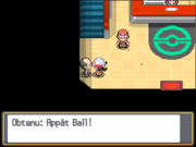 Route 32 Appât Ball HGSS.png