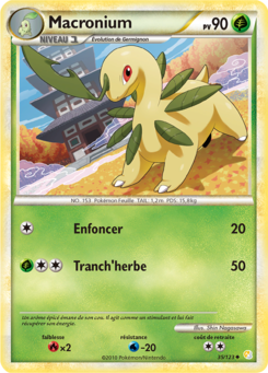 Carte HeartGold SoulSilver 35.png