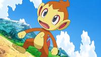pokemon une rencontre enflammée