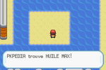 Route 23 Huile Max RFVF.png