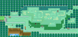 Route 12 NB.png