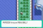 Route 110 Poké Ball RSE.png