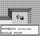 Route 10 Huile Max RB.png