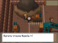 Charbourg Muscle + PT.png