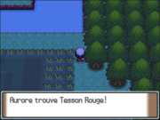 Grand Marais Tesson Rouge PT.png